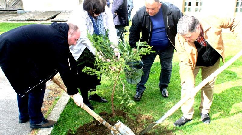 ბაღდათის მუნიციპალიტეტში გამწვანების აქცია მოეწყო