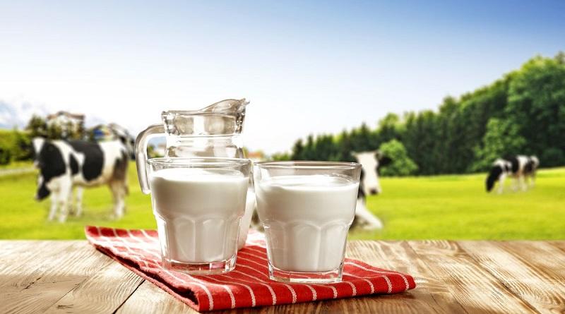 თიანეთში რძის გადამმუშავებელი საწარმო შენდება